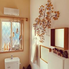 トイレの神様 毎日☆使う空間だから いつでも綺麗に清潔…