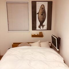 ベッドルーム/ポスター/インテリア/無印良品 チョット小物を入れ替え✨ 気分転換(๑˃…