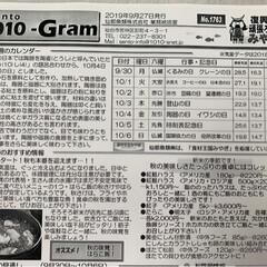 水産🐟情報紙/仙台市場情報紙 おはょ━ヽ(`・ω・)ノ━ぅ!!  …(2枚目)