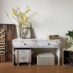リビング/テーブル/デスク/ベンチ/棚/テレビボード/... 春らしいコーディネート 花やグリーンが楽…(7枚目)