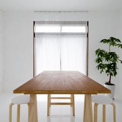 住まい/インテリア/DIY/建築/リフォーム/リノベーション/... Room S.W