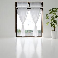 住まい/インテリア/DIY/建築/リノベーション/リフォーム/... Room S.W