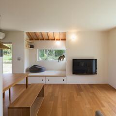建築/住まい/インテリア/猫/ネコ/壁掛けテレビ/... リビングダイニングに隣接して小上がりコー…(1枚目)