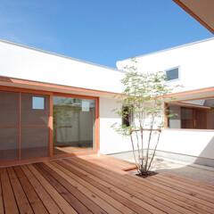 建築/住まい/土間/ウッドデッキ/中庭/シンボルツリー/... 通り土間から繋がる カーテンのいらないプ…