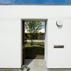 中庭/コートハウス/平屋/白い外壁/名古屋/愛知/... 中庭にづづくアプローチ