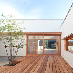 建築/住まい/インテリア/ウッドデッキ/中庭/コートハウス/... 子供室から中庭を介して居間・食堂方向を見る
