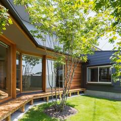 住まい/建築/縁側/芝生/ガラス/木製建具/... 大開口のFIXと引込の木製建具。 芝生の…
