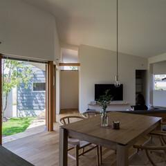 住まい/インテリア/建築/平屋/庭/縁側/... キッチンより居間食堂を望む。 庭を囲む様…(1枚目)