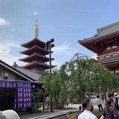 浅草寺/浅草/おでかけ/旅行/おでかけワンショット 浅草寺に行ってきました!(1枚目)