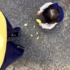 女の子ママ/1歳/カラーリンク/リンクコーデ/親子/お散歩/... 秋晴れの今日は マスタード×ネイビーで …