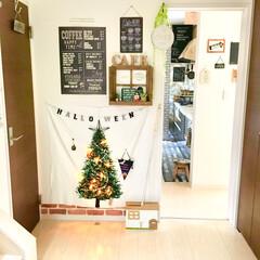 カフェ風インテリア/LEDライト/ハロスマス/クリスマスツリー/トーカイ/ツリータペストリー/... ハロウィンコンテスト用です♪  玄関ホー…