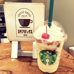 甘党/さくらんぼ/レトロ可愛い/プリンアラモード/フラペチーノ/スターバックスコーヒー/... 先日、スタバの新作フラペチーノを飲んでき…