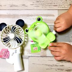 子供が喜ぶ/手動扇風機/涼しい雑貨/夏グッズ/こどものいる暮らし/アニマル雑貨/... ダイソーのミニ扇風機かわいすぎます♡  …