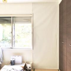 建売住宅/シンプルライフ/ホワイトインテリア/グレイッシュ/グレーインテリア/グレー/... 真っ白な壁をグレーにリメイク♪  グレイ…(1枚目)
