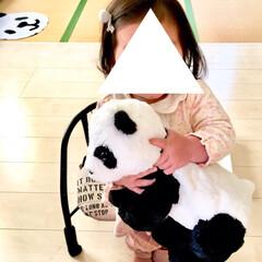IKEA/ブーム/抱っこ/一緒に寝る/ねんね/モノトーン雑貨/... 今日で娘が1歳3ヶ月になりました。  少…