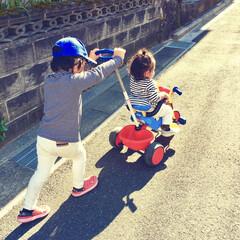 秋晴れ/仲良し/きょうだい/兄妹/三輪車/秋ファッション/... 秋はボーダートップスが大活躍♪  4歳と…