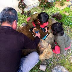 1歳/4歳/おじいちゃん/孫と/砂場遊び/砂場DIY/... 実家の庭でじいじとお砂遊びに夢中♪  こ…