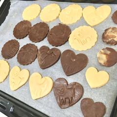 こどものいる暮らし/チョコチップクッキー/型抜きクッキー/バレンタインデー/バレンタインギフト/バレンタインレシピ/... 今年のバレンタインは 2歳の娘と一緒にク…(2枚目)