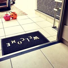モノトーンインテリア/ハロウィン雑貨/建売住宅/玄関アプローチ/シンプルインテリア/傘立て/... 今朝、玄関を開けたらビックリ!  ハロウ…