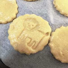 親子で楽しめる/こどものいる暮らし/ライオン/動物クッキー/手作りクッキー/クッキースタンプ/... 可愛いライオンさんクッキー♡  5歳の息…