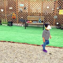 ガーデン/こどものいる暮らし/子ども/かぼちゃ/ミニブリック/人工芝マット/... ハロウィン仕様の庭です。  道路に面して…