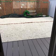 こどものいる暮らし/御影石/防水加工/グリーンガーランド/パークベンチ/台風の影響/... 自己流でDIYした庭です。 元々は庭全体…(2枚目)