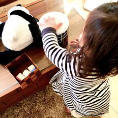 モノトーン雑貨/女の子ママ/1歳/赤ちゃんのいる生活/こどものいる暮らし/簡単DIY/... 我が家には手作りおもちゃが沢山あります。…