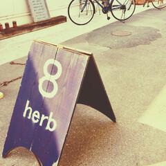 カフェ好き/カフェ巡り/ケーキ/テイクアウト/大人気/カフェ/... 県内で大人気のカフェ♡  少し距離がある…