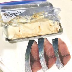 ヨーグルト漬け/下味レシピ/下味保存/下味冷凍/冷凍庫収納/冷凍保管/... よく投稿している下味冷凍写真。  今回は…