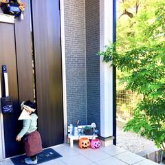 玄関飾り/ハロウィン仕様/ミニベンチ/シンボルツリー/ハロウィンインテリア/ハロウィン/... ハロウィン仕様の玄関アプローチです。  …