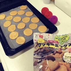 バレンタイングッズ/手作りクッキー/親子で楽しく/クッキー/バレンタイン2020/キッチン雑貨/... 皆さま、今年のバレンタインは 何を作るか…