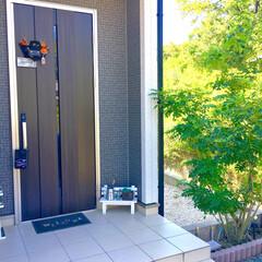 モノトーンインテリア/100均リメイク/100均DIY/簡単リメイク/セリアリメイク/ハロウィン飾り/... 建売住宅らしい、シンプルな玄関アプローチ…