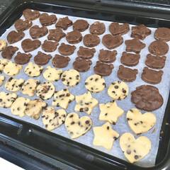 こどものいる暮らし/チョコチップクッキー/型抜きクッキー/バレンタインデー/バレンタインギフト/バレンタインレシピ/... 今年のバレンタインは 2歳の娘と一緒にク…(3枚目)