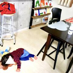 お昼寝/暖房/1歳/こどものいる暮らし/絵本棚DIY/コンクリート壁紙/... 家事をしている間、 リビングでぬいぐるみ…