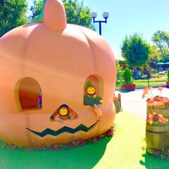 遊園地/モートピア/おすすめ/こどものいる暮らし/かぼちゃロンパース/かぼちゃ/... 3連休最終日は遊園地の ハロウィンイベン…(1枚目)