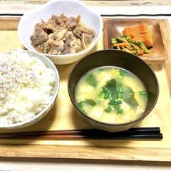 作り置きおかず/晩ご飯/牛肉煮込み/舞茸料理/下味冷凍/おうちごはん/... 下味冷凍レシピにハマっています。  少し…
