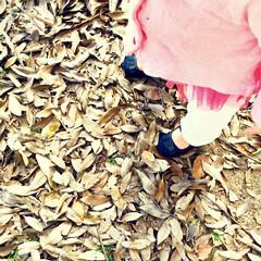 木の葉/エイチアンドエム/ミキハウス/女の子ママ/1歳/公園/... 明日で1歳2ヶ月になる娘。 随分歩くのが…
