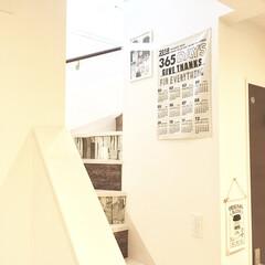 シンプルインテリア/建売住宅/DIY女子/ビフォー画像/階段インテリア/リメイクシート/... 我が家の階段付近の写真です。  階段の蹴…