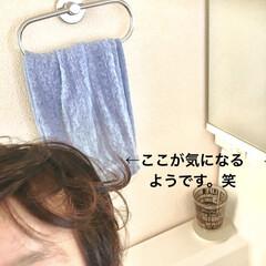寝ぐせ/こどものいる暮らし/男の子ママ/コップ/タオル/フランフラン/... 今朝、息子(4)が しきりに洗面所とリビ…