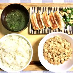 ニラ玉/わかめスープ/餃子/焼肉のたれレシピ/麻婆豆腐/美味しい/... 本日の晩ごはん。  ◎麻婆豆腐 ◎餃子 …