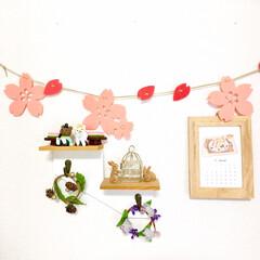 うさぎ/ひなまつり/さくら/春色/季節の飾り/リビングインテリア/... リビングの壁面コーナーを 3月バージョン…