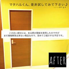 DIY女子/かべがみ道場/タッカー/壁紙リメイク/壁紙DIY/玄関/... 少し前に、玄関ホールの真っ白な壁を 春ら…