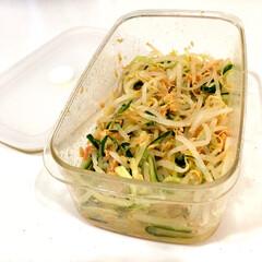 保存容器/つくおき/作り置き/常備菜/ツナ缶/もやし/... もやしの常備菜の定番といえばナムルですが…
