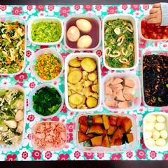 ホーロー/手作り料理/つまみ食い/常備菜/つくおき/作り置き/... 簡単なものばかりですが…  我が家のつく…