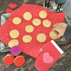 手作りバレンタインアイデア/バレンタイン/型抜きクッキー/こどものいる暮らし/クッキースタンプ/フライングタイガー/... 子どもと一緒にバレンタインを楽しみたい方…