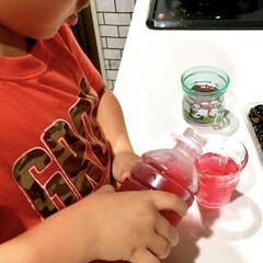 感謝/おすそ分け/こどものいる暮らし/子どもが喜ぶ/美味しい/甘くて/... 4歳の息子がハマっているしそジュース。 …