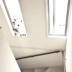 小窓/建売住宅/シンプルインテリア/枝ツリー/ハロウィンツリー/ハロスマス/... シンプルな階段の小窓部分に ハロウィン仕…