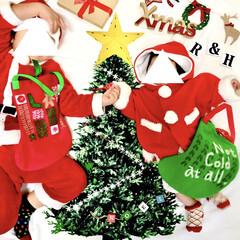 クリスマスフォト/マンスリーフォト/月齢フォト/サンタクロース/おうちフォト/トーカイ/... クリスマスがやってきた!コンテストに参加…