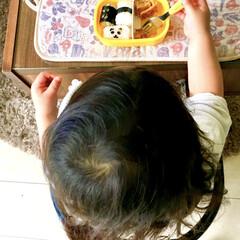 リビング/頑張れ/練習中/1歳児/こどものいる暮らし/パンダ弁当/... 何故、リビングでお弁当を食べているのか?…