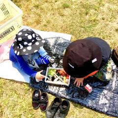 快晴/春日和/公園遊び/お外ごはん/ピクニック/おでかけワンショット/... 天気の良い日は お弁当を持ってピクニック…